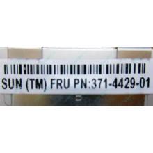 Серверная память SUN (FRU PN 371-4429-01) 4096Mb (4Gb) DDR3 ECC в Артеме, память для сервера SUN FRU P/N 371-4429-01 (Артем)