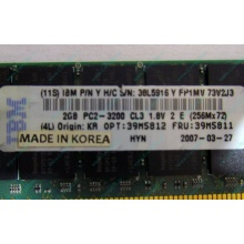IBM 39M5811 39M5812 2Gb (2048Mb) DDR2 ECC Reg memory (Артем)