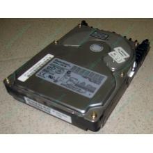 Жесткий диск 18.4Gb Quantum Atlas 10K III U160 SCSI (Артем)