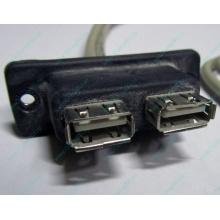 USB-разъемы HP 451784-001 (459184-001) для корпуса HP 5U tower (Артем)