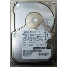 Жесткий диск 18.2Gb IBM Ultrastar DDYS-T18350 Ultra3 SCSI (Артем)