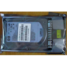 HDD 146.8Gb HP 360205-022 404708-001 404670-002 3R-A6404-AA 8D1468A4C5 ST3146707LC 10000 rpm Ultra320 Wide SCSI купить в Артеме, цена (Артем)